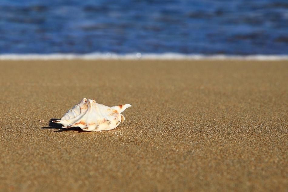 хотели Слънчев бряг 21 от Holiday Planet