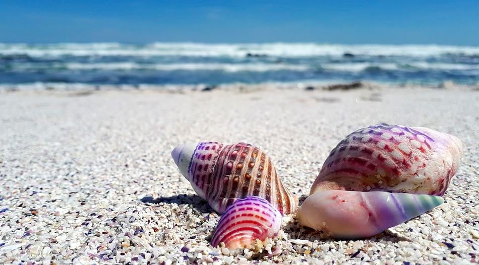 оферти за море 19 от Holiday Planet
